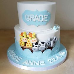 Noahs Ark Communion Cake